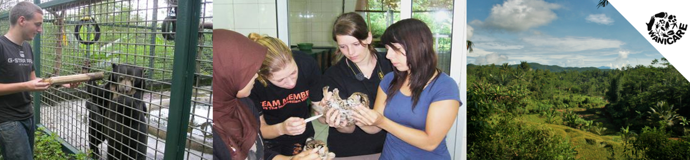 Volunteers vrijwilligerswerk vrijwilligers indonesie wanicare java 2.jpg