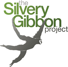 the-silvery-gibbon-project