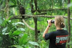 eagle behaviour observation by Inge Tielen