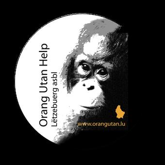 orangutan hilfe wanicare CikanangA