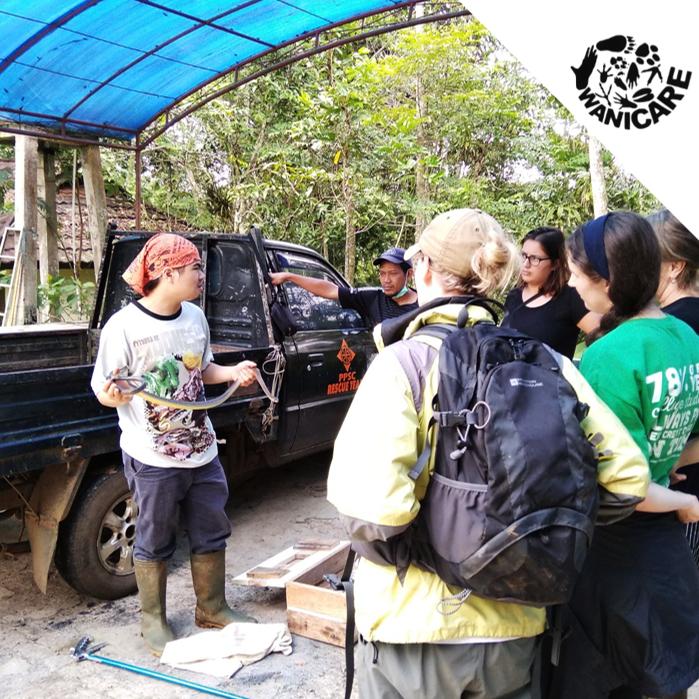 volunteers wildlife indonesia animals rescue center Wanicare Cikananga