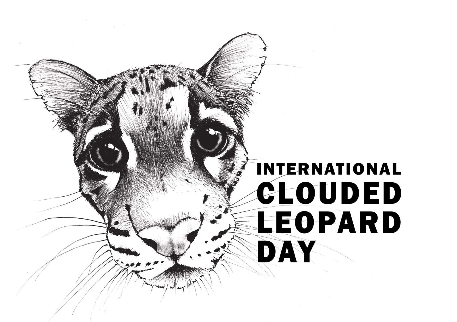 Clouded-leopard-aspinal-howlett-wanicare-cikananga.png