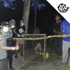 Animals rescue Indonesia Wanicare Cikananga